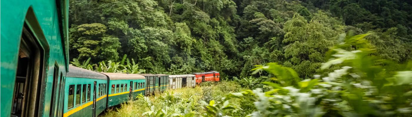 El tren de la selva de Madagascar_02